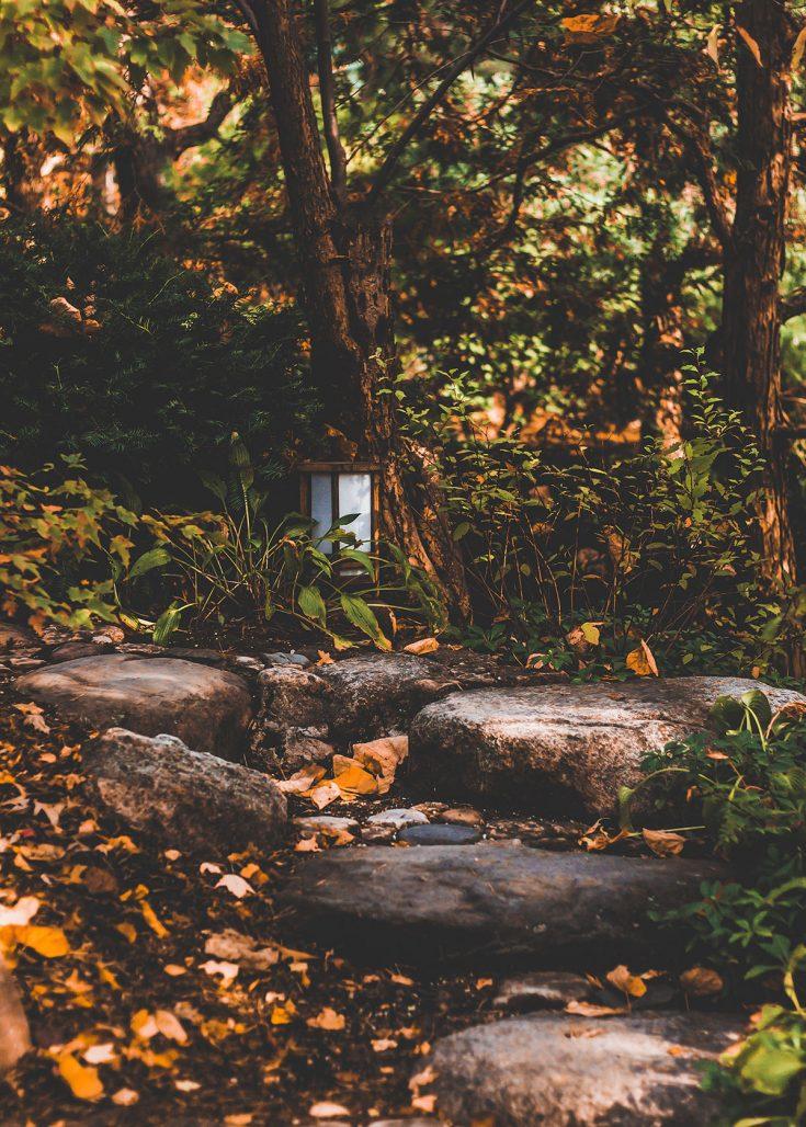 Vindlande gång med stenar i trädgården