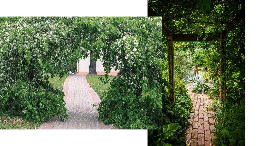 Trädgårdsgångar i en avlång trädgård