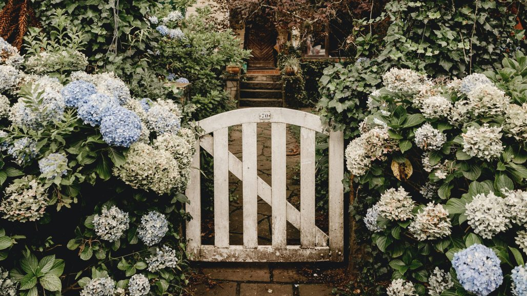 Liten trädgård