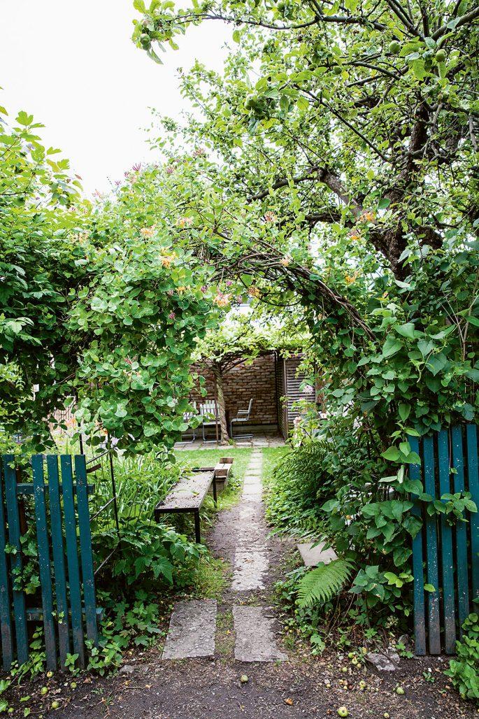 """Öppning in till trädgård ur boken """"Mästarnas trädgårdsrum"""""""