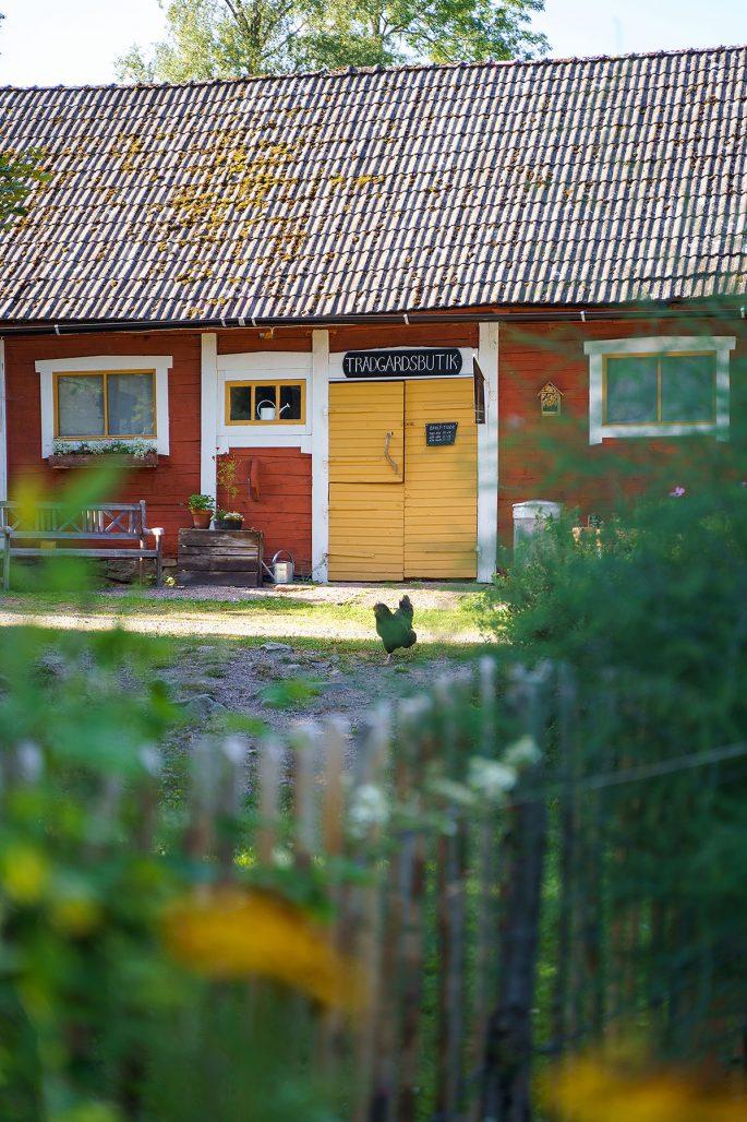 Trädgårdsbutik på Fiddekulla gård
