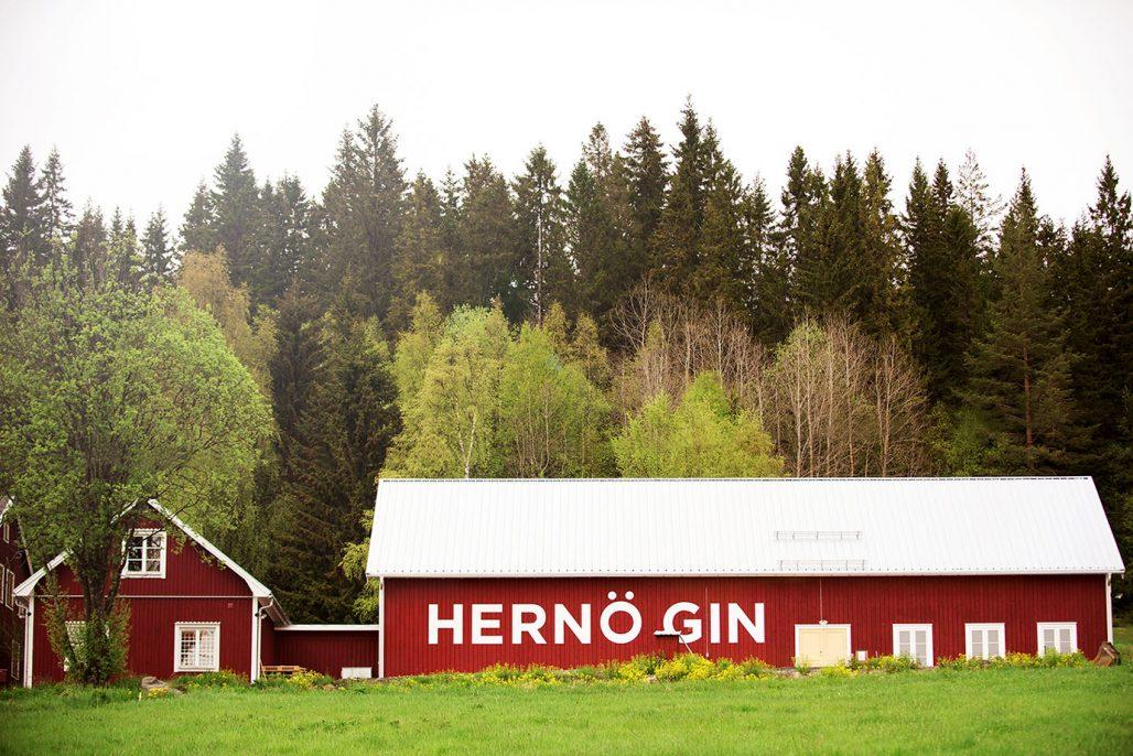 Besök Hernö Gin