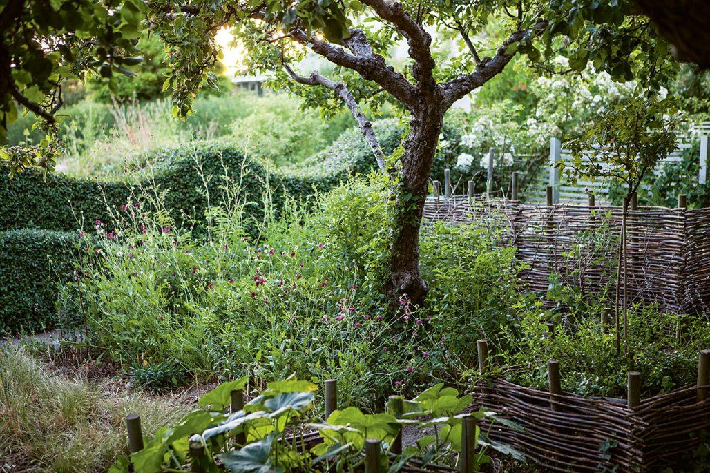 Trädgård ur boken Mästarnas trädgårdsrum