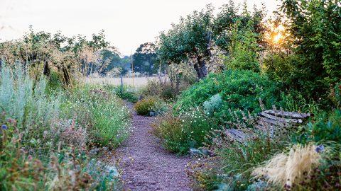 Trädgårdsgång ur boken Mästarnas trädgårdsrum