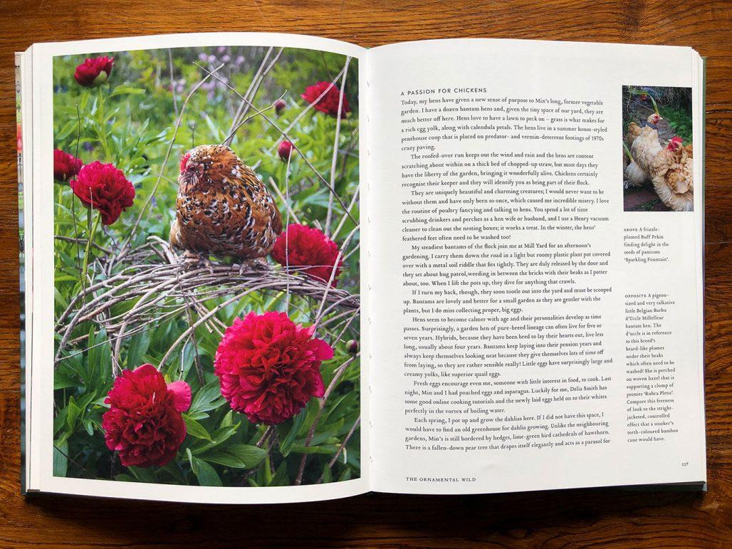 Uppslag ur Arthur Parkinsons bok The Flower Field
