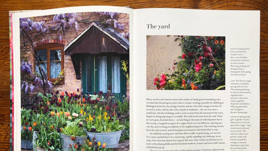 Boken The Flower Field av Arthur Parkinson
