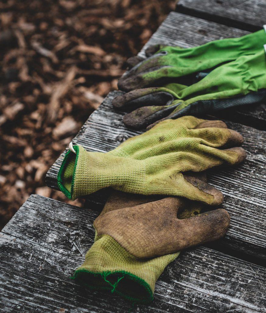 Kom igång med trädgårdsarbetet med appen Gardenr