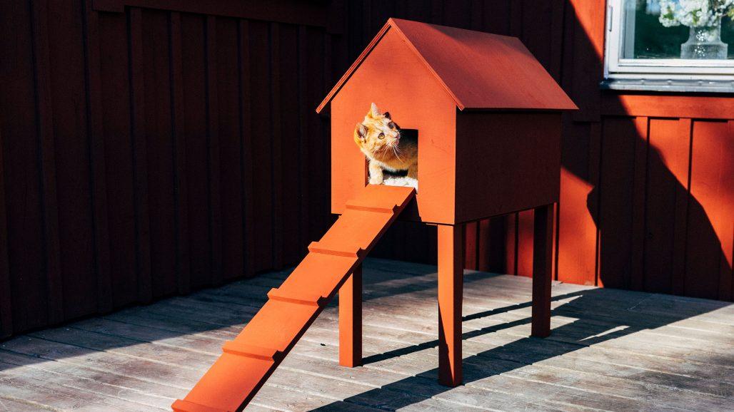 Hus för katten av Mimmi Staaf