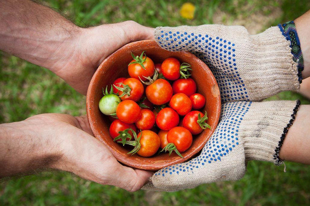 Ge bort grönsaker till vänner och bekanta