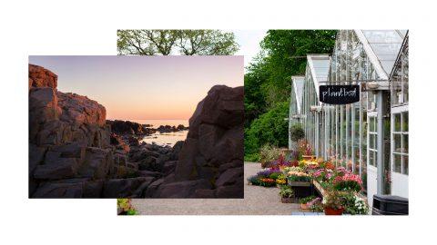 Louise Liljencrantz guide till Sommarsverige