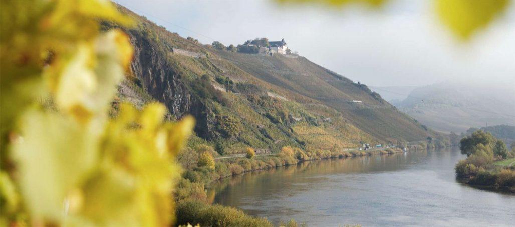 Moseldalens kullar i Tyskland
