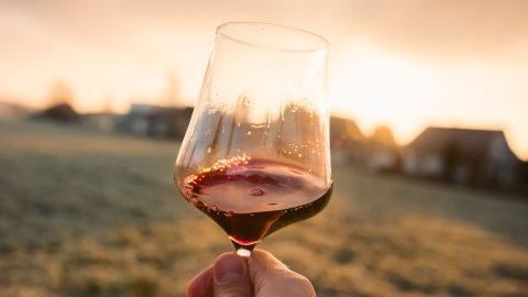 Välj vin vid grillen i sommar