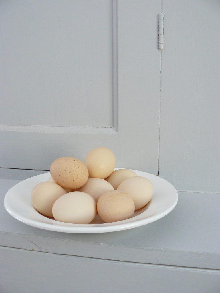 Ägg från frigående höns